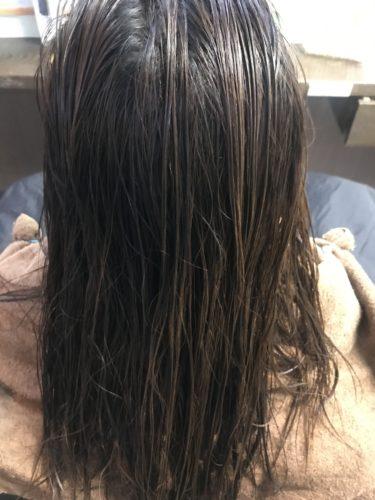 プリミエンスのカラーリングをする前の髪の毛の色