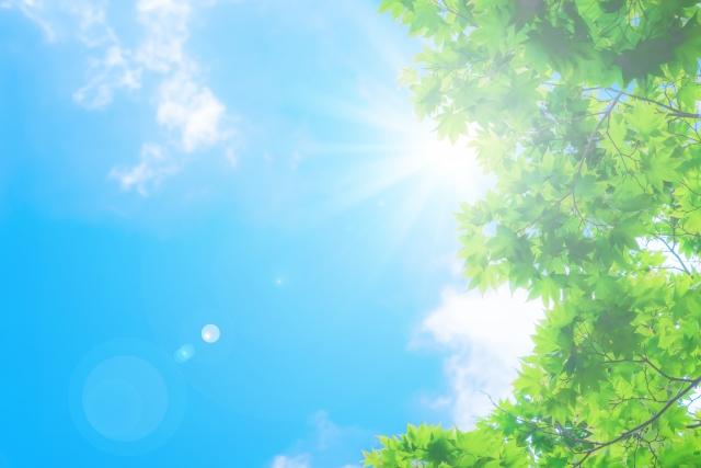 紫外線やエアコンの悪影響を受けやすい春夏のヘアケアが髪の毛の寿命を決定します