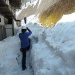 山梨県の雪かきボランティアに行ってきました
